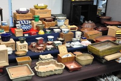 Tachi's father sells antique pots - we spent a lot of time looking these over