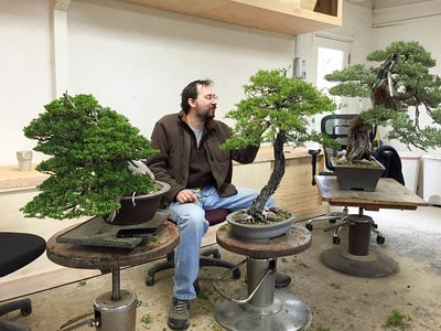 Things Seen At A Bay Island Bonsai Workshop Bonsai Tonight
